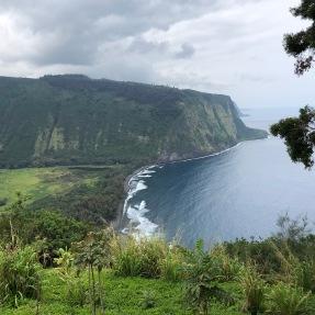 Hawaii family 17