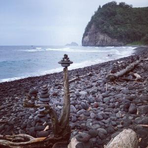 Hawaii nature 14