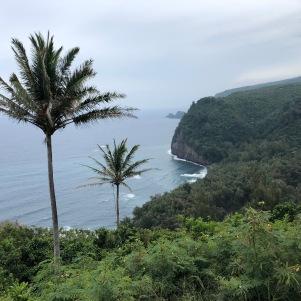 Hawaii nature 15