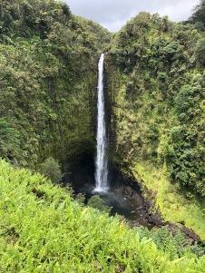 Hawaii nature 16